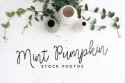 3 Mint Pumpkin Stock Photos