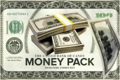 Money Stacks & Falling Money Pack