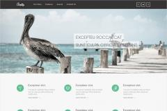 Free HTML5 Responsive Template