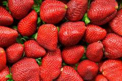 9 Tasty Food Backgrounds