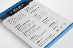 Free Printable Resume PSD