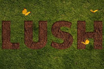 Grass and Dirt Text Effect