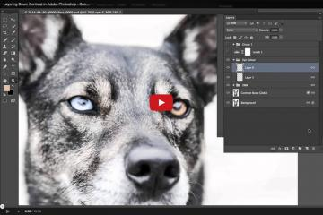 Layering Down Contrast In Photoshop – Video Tutorial