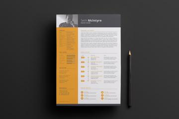 Clean, Single Color CV Template