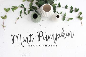 3 Mint Pumpkin Stock Photos